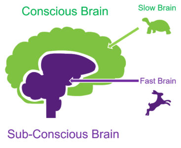 A diagram of type 1 and type 2 thinking
